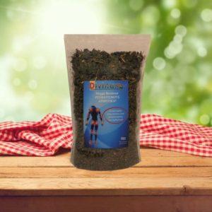 Τσάι βοτάνων ρευματισμών
