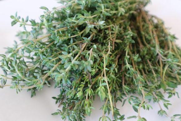 Θυμάρι το βότανο του καλοκαιριού